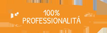 100_profession
