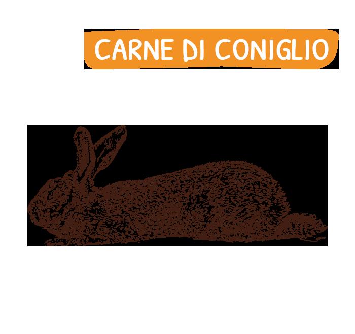 home_carne_coniglio
