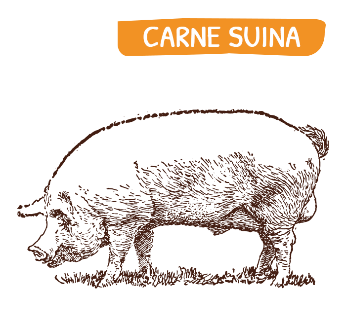 home_carne_suina